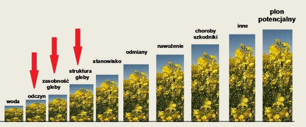 czynniki agrotechniczne1